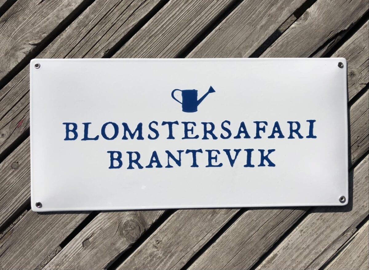 blomstersafari-företagsskylt